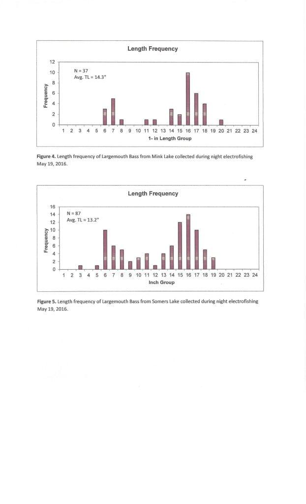 MinkSomers Bluegill assessment 3